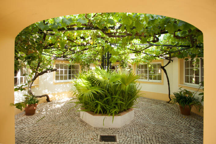 Arbor at the entrance, luxury homes
